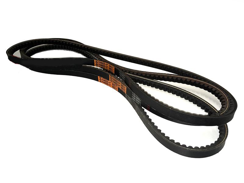 3-belts-lince-volpe-en
