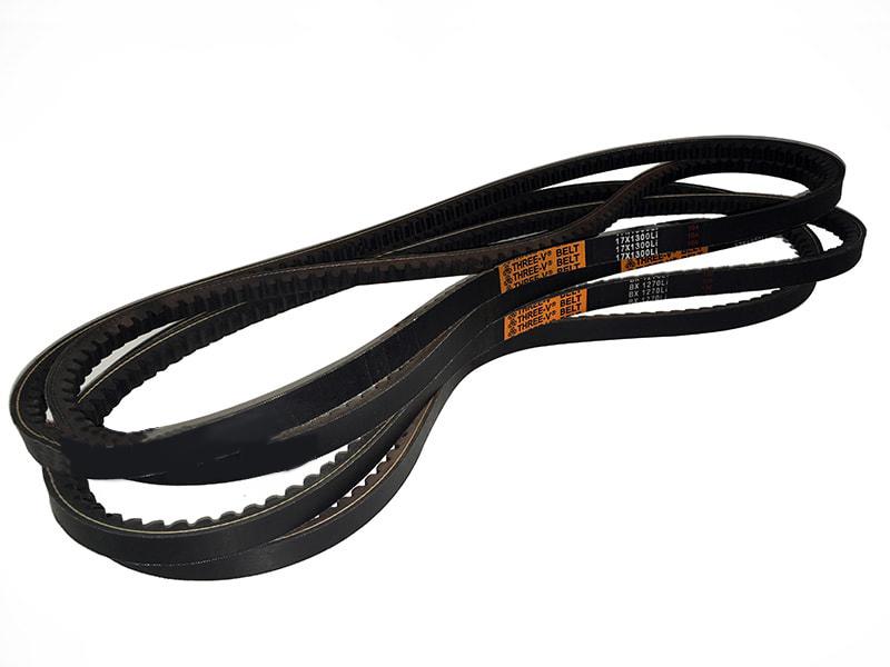 4-belts-lince-volpe-en