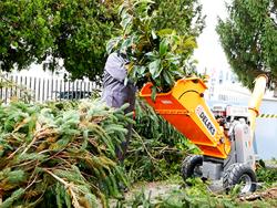 broyeur de branches thermique dk 800 honda pour sarments