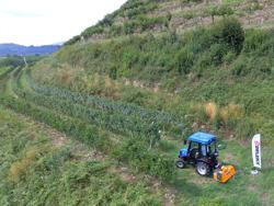 broyeur à marteaux lynx 120 pour tracteur type kubota iseki yanmar