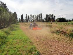 broyeur à marteaux déportable tigre 200 pour herbe et sarments